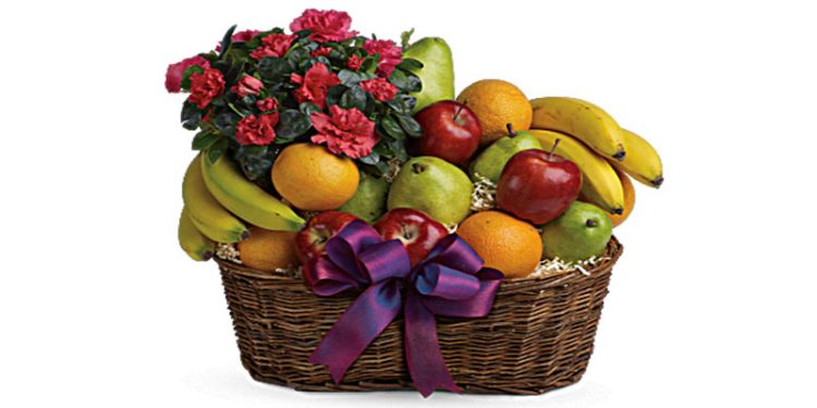 Fruit Basket-