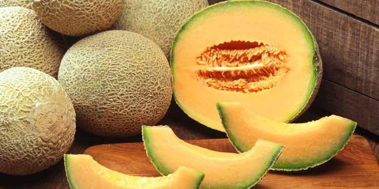image-melon-web