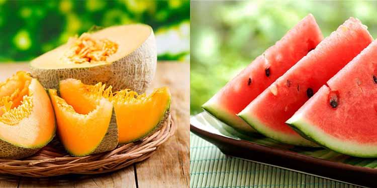 melon-photo-web